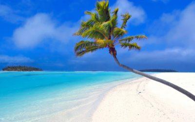 15. März: Mit einem selbstgebauten Katamaran von Hochstraß in die Karibik 🗓